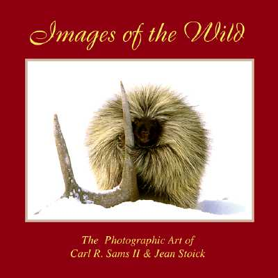 Image for Images of the Wild: Photography and Stories