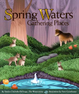 Image for Spring Waters, Gathering Places