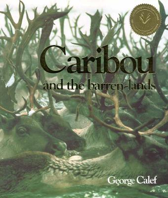 Image for Caribou and the Barren Lands
