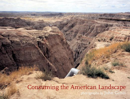 Image for Consuming the American Landscape