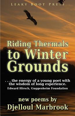 Image for Riding Thermals to Winter Grounds