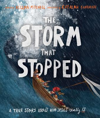 Image for The Storm That Stopped