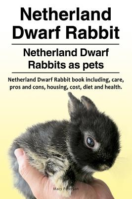 Image for Netherland Dwarf Rabbit. Netherland Dwarf Rabbits as pets. Netherland Dwarf Rabbit book including pros and cons, care, housing, cost, diet and health.