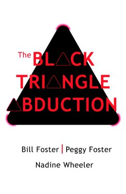 Image for The Black Triangle Abduction