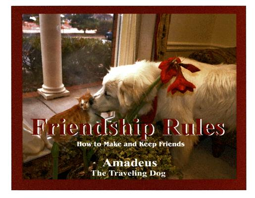 Image for Friendship Rules: How To Make And Keep Friends