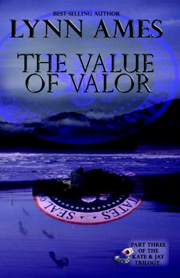 Image for VALUE OF VALOR, THE KATE & JAY TRILOGY 3