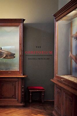 The Odditorium: Stories, Melissa Pritchard