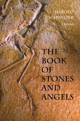 Image for The Book of Stones and Angels