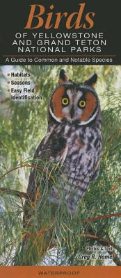 Image for Birds of Yellowstone & Grand Teton National Parks: A Guide to Common & Notable Species