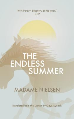 Image for Endless Summer (Danish Women Writers Series)
