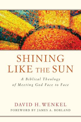 Image for Shining Like the Sun: A Biblical Theology of Meeting God Face to Face