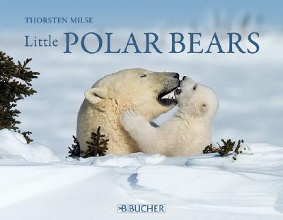 Image for Little Polar Bears