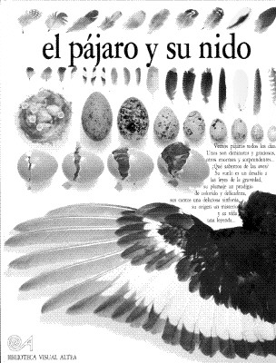 Image for El Pajaro Y Su Nido (Eyewitness Series in Spanish) (Spanish Edition)