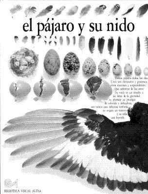 El Pajaro Y Su Nido (Eyewitness Series in Spanish) (Spanish Edition), Burnie, David