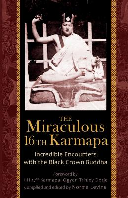 Image for The Miraculous 16th Karmapa