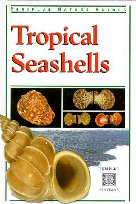 Image for Tropical Seashells